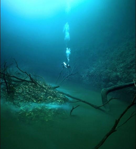 """墨西哥潛水員在海底發現神秘洞穴和""""小河""""圖片"""